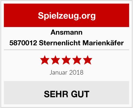 Ansmann 5870012 Sternenlicht Marienkäfer Test