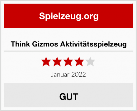 No Name Think Gizmos Aktivitätsspielzeug  Test