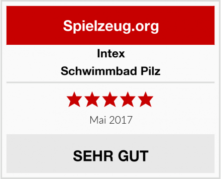 Intex Schwimmbad Pilz Test