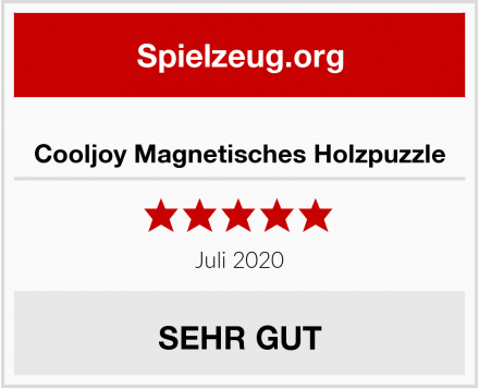 Cooljoy Magnetisches Holzpuzzle Test