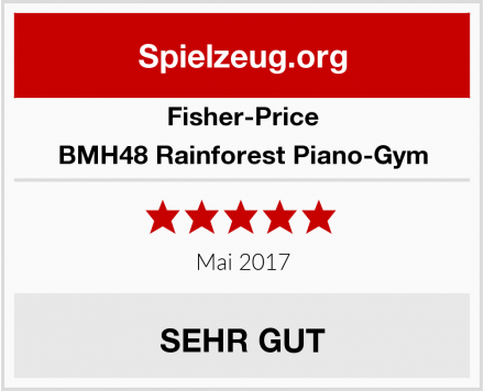 Fisher-Price BMH48 Rainforest Piano-Gym Test