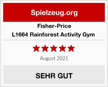 Fisher-Price L1664 Rainforest Activity Gym  Test