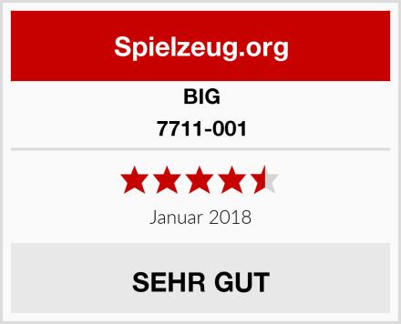 BIG 7711-001 Test
