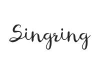 Singring Spielzeuge